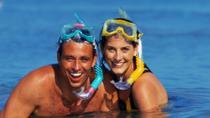 Montego Bay Snorkeling Tour, Montego Bay, Snorkeling
