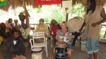 Rastafari Indigenous Village Tour from Negril, Negril, Day Trips