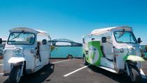 Electric Tuk-Tuk Private Heritage and Cultural Tours, Auckland, City Tours