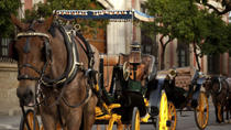 Cartagena Horse and Carriage Night Ride Including Dinner, Cartagena, Private Sightseeing Tours