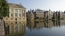 Private Tour: The Hague Walking Tour Including Peace Palace Visitors Center, The Hague, null