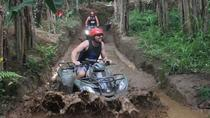 Bali ATV Ride with Swing and Rice Terraces, Kuta, 4WD, ATV & Off-Road Tours