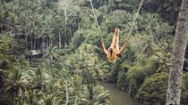 Bali Swing and Kintamani Volcano Tour, Kuta, Attraction Tickets