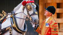 Royal Mews at Buckingham Palace and Changing the Guard, London, Cultural Tours