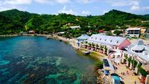 Best of Roatan Free Style Island Tour, Roatan, Ports of Call Tours