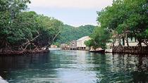 Roatan Mangrove Tunnel Eco Tour And Beach, Roatan, Eco Tours