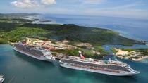 Roatan Shore Excursion: Private East & West Island Sightseeing Tour, Roatan, Ports of Call Tours