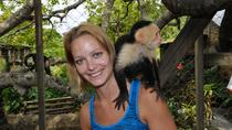 Roatan Wildlife Rescue Park And Beach, Roatan, Ports of Call Tours