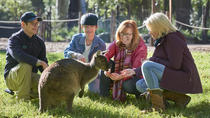 Australian Wildlife Experience at Healesville Sanctuary, Melbourne, Zoo Tickets & Passes