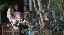 Australian Wildlife Tour at Melbourne Zoo, Melbourne, Zoo Tickets & Passes