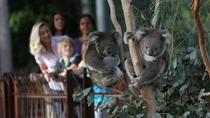 Melbourne Zoo General Entry Ticket, Melbourne, Private Sightseeing Tours