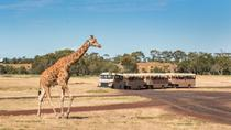 Werribee Open Range Zoo General Admission, Victoria, Zoo Tickets & Passes