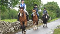 Horse Riding Experience, Westport, 4WD, ATV & Off-Road Tours