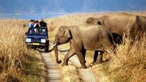 Same Day National Park Tiger Safari Trip, Jaipur, Attraction Tickets