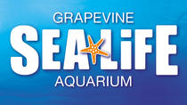SEA LIFE Aquarium Dallas, Dallas, Self-guided Tours & Rentals