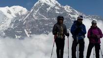 Mardi Himal Newly Discovered Trekking from Pokhara Nepal, Pokhara, Multi-day Tours
