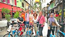 Lion City Bike Tour of Singapore, Singapore, City Tours