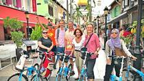 Lion City Bike Tour of Singapore, Singapore, City Tours