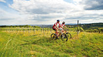 Private Tour: Vienna Woods and Kahlenberg Mountain Bike Ride, Vienna, Walking Tours