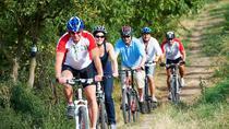 Vienna Woods Mountain Bike Tour, Vienna, Super Savers