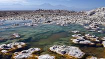 Atacama Salt Flat and Toconao Tour from San Pedro, San Pedro de Atacama, Half-day Tours