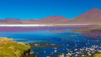 Atacama Salt Flat Lagoons Tour Including Ojos del Salar from San Pedro de Atacama, San Pedro de...