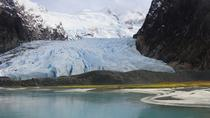 Balmaceda and Serrano Glaciers Sightseeing Cruise from Puerto Natales, Puerto Natales