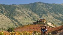 Colchagua Valley Winery Day Trip from Santiago, Santiago, Wine Tasting & Winery Tours
