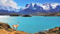 Full-Day Tour of Torres del Paine National Park from Puerto Natales, Puerto Natales, null