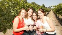 Santiago Super Saver: Concha y Toro plus Vina del Mar and Valparaiso Day Trip, Santiago, Wine ...