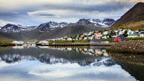 Arctic Coastline and Micro Brewery, Akureyri, Beer & Brewery Tours