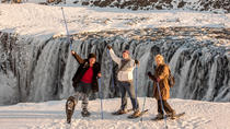 Dettifoss Waterfall Super Jeep Tour from Lake Myvatn, Akureyri, Day Trips