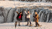 Dettifoss Waterfall Tour from Lake Myvatn, Iceland, Day Trips