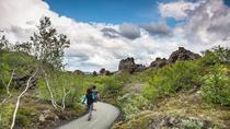 Lake Myvatn Classic Tour from Akureyri, Akureyri, Day Trips