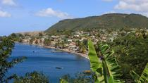 Dominica Shore Excursion: Roseau City Sightseeing and Beach Tour, Dominica, Bus & Minivan Tours