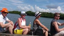 Cartagena Mangrove Tour, Cartagena, Half-day Tours