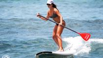 Stand-Up Paddleboard Lesson on the Big Island, Big Island of Hawaii, Surfing Lessons