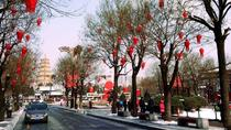 Half Day Private Tour of City Highlights in Xi'an, Xian, Private Sightseeing Tours