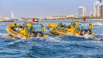 Dubai RIB Boat Cruise: Palm Jumeirah and Dubai Marina, ドバイ