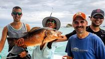 Inshore Sportfishing, Quepos, Day Cruises