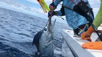 Offshore Sportfishing, Quepos, Day Cruises