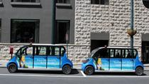 Atlanta City Tour by Electric Car, Atlanta, City Tours