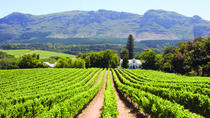 Full day Winelands Tour, Cape Town, Cultural Tours