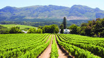 Half day Winelands Tour (afternoons only), Cape Town, Cultural Tours