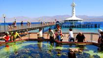 Admission Ticket: Underwater Observatory Marine Park, Eilat, Attraction Tickets