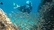 Fun Dives (Certified Divers), Nha Trang, Other Water Sports