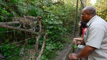 The Belize Zoo Admission Ticket, Belize City, Nature & Wildlife