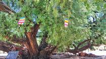 Sunrise and village visit in Bagan, Bagan, Day Trips