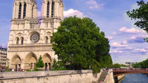 Small-Group Walking Tour: From Notre-Dame to the Champs-Élysées, Paris, Walking Tours