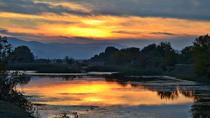 Lake Kerkini Wildlife Day Trip from Thessaloniki, Thessaloniki, Day Trips
